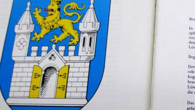 Bild von Flagge zeigen für Wunstorf