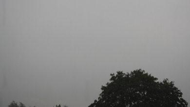 Bild von Herbstanfang in Wunstorf