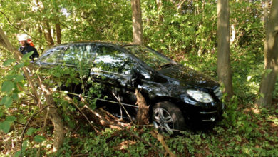 Bild von Mercedes verfährt sich zwischen Bäumen