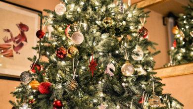 Bild von Müllabfuhr holt Weihnachtsbäume ab