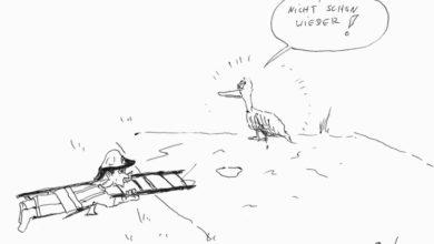 Bild von Entenrettung