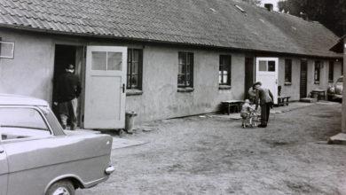"""Bild von Flüchtlingssiedlung """"Friedenstal"""""""
