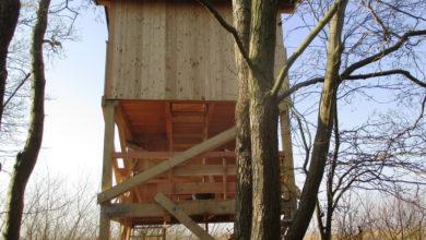 Photo of Sanierung von Naturpark-Aussichtsturm vollendet