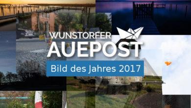 Bild von Wahl zum Auepost-Bild des Jahres 2017
