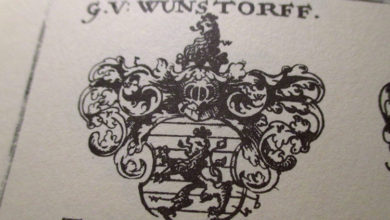 Bild von Das Geheimnis des Wunstorfer Wappens