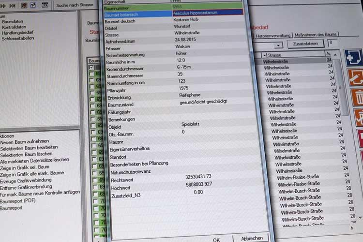 Software zum Baumbestand