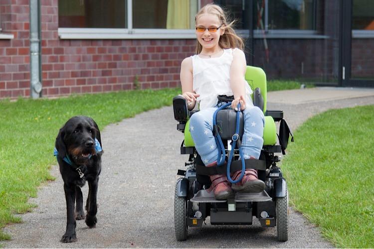 Apporte Assistenzhunde für Menschen im Rollstuhl - Bild 5