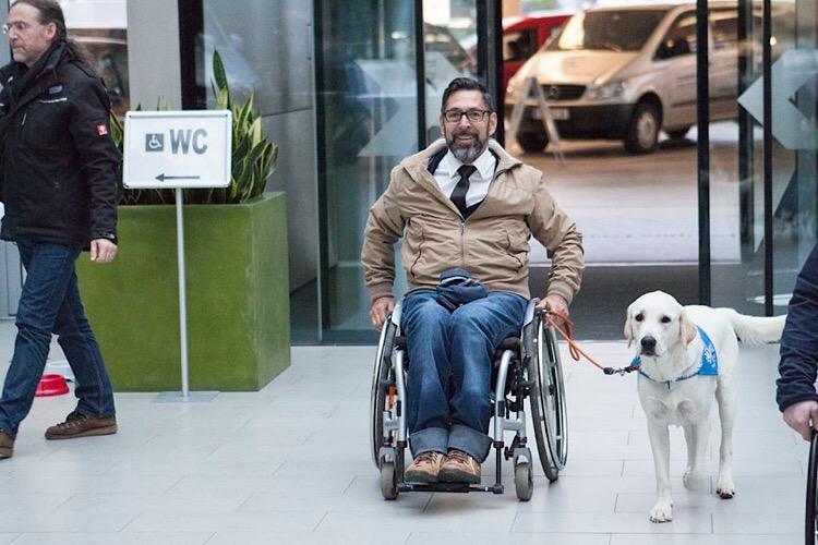 Apporte Assistenzhunde für Menschen im Rollstuhl - Bild 3