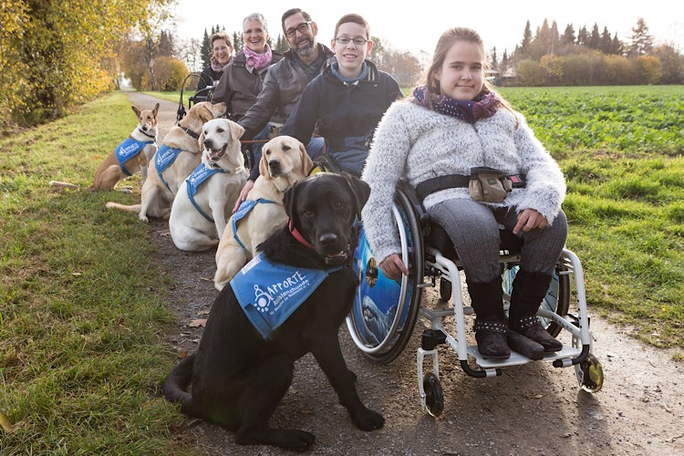 Photo of Besondere Helfer auf vier Pfoten für Menschen im Rollstuhl
