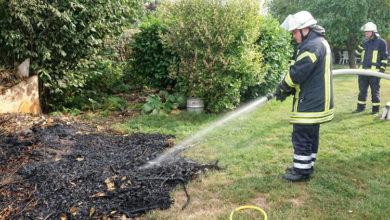 Bild von Grundstücksbesitzer verbrennt Gartenabfälle