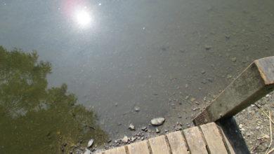 Bild von UV-Warnung für Wunstorf