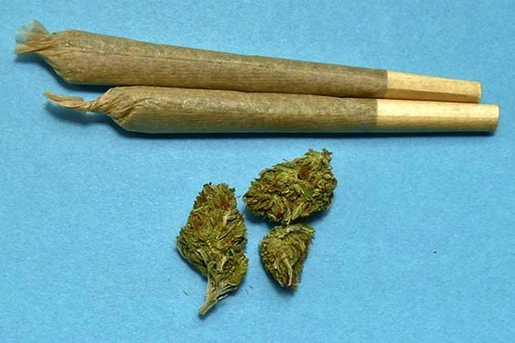 Photo of Anstiftung zum Drogenverkauf