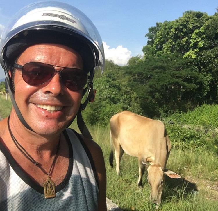 Cool mit Kuh