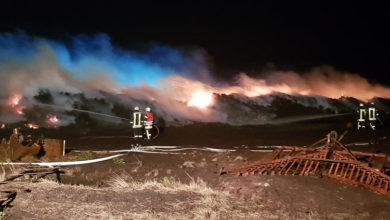 Bild von Im Norden des Steinhuder Meeres brennt der Torf