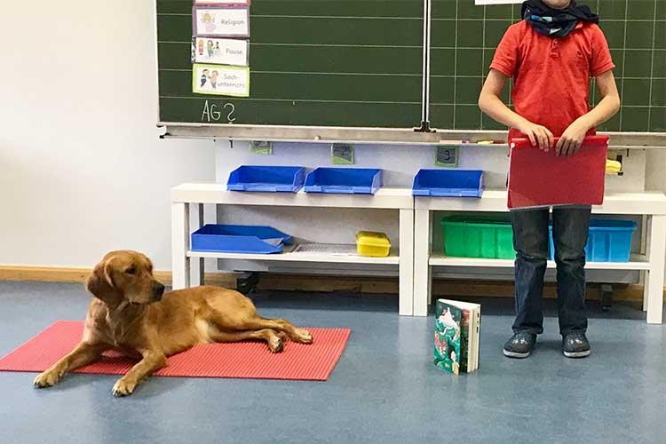 Friedlies trifft Schulhund Ella