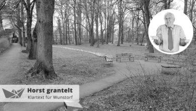 Bild von Mit Frühblühern werdet ihr den Bürgerpark nicht retten