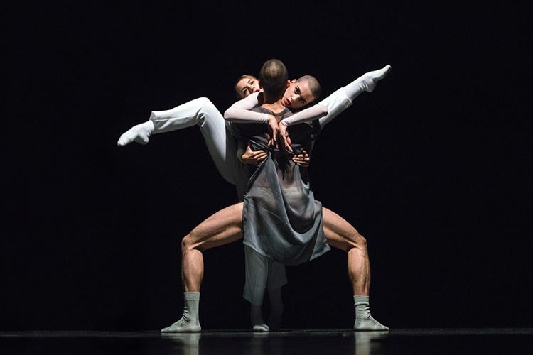 Tanz der Sinne