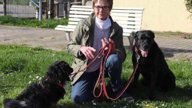 Bild von Friedlies trifft … Kerstin Paulmann und Marita Röver