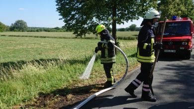 Bild von Böschungsbrand in Auhagen