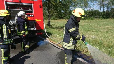 Bild von Schon wieder brennt der Straßenrand bei Auhagen