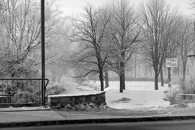 Alter Bürgerpark im Winter