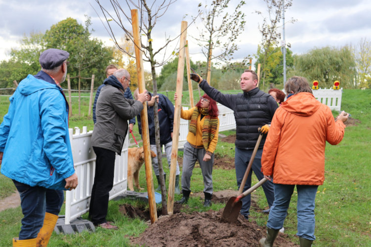 Baumpflanzaktion Ortsrat Wunstorf