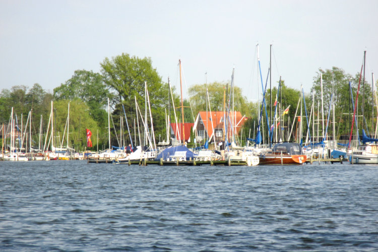 Nordufer Steinhuder Meer