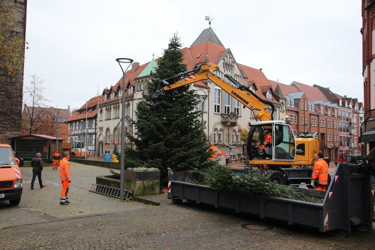 Weihnachtsbaumaufstellung