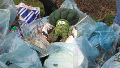 Photo of Im Bürgerpark gingen den Helfern die Müllsäcke aus