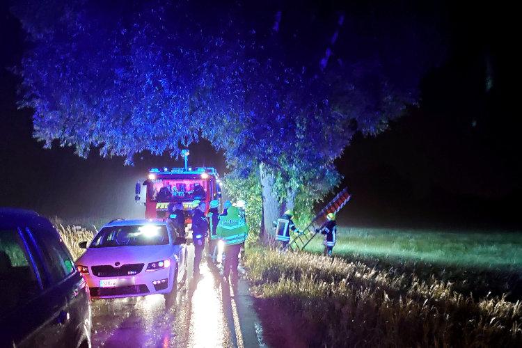Rettung vom Baum