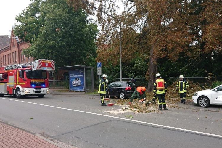 Feuerwehreinsatz herabstürzender Ast