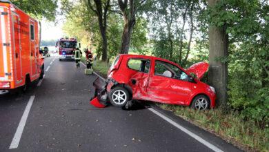 Bild von Auto kollidiert mit Baum und Straßenschild