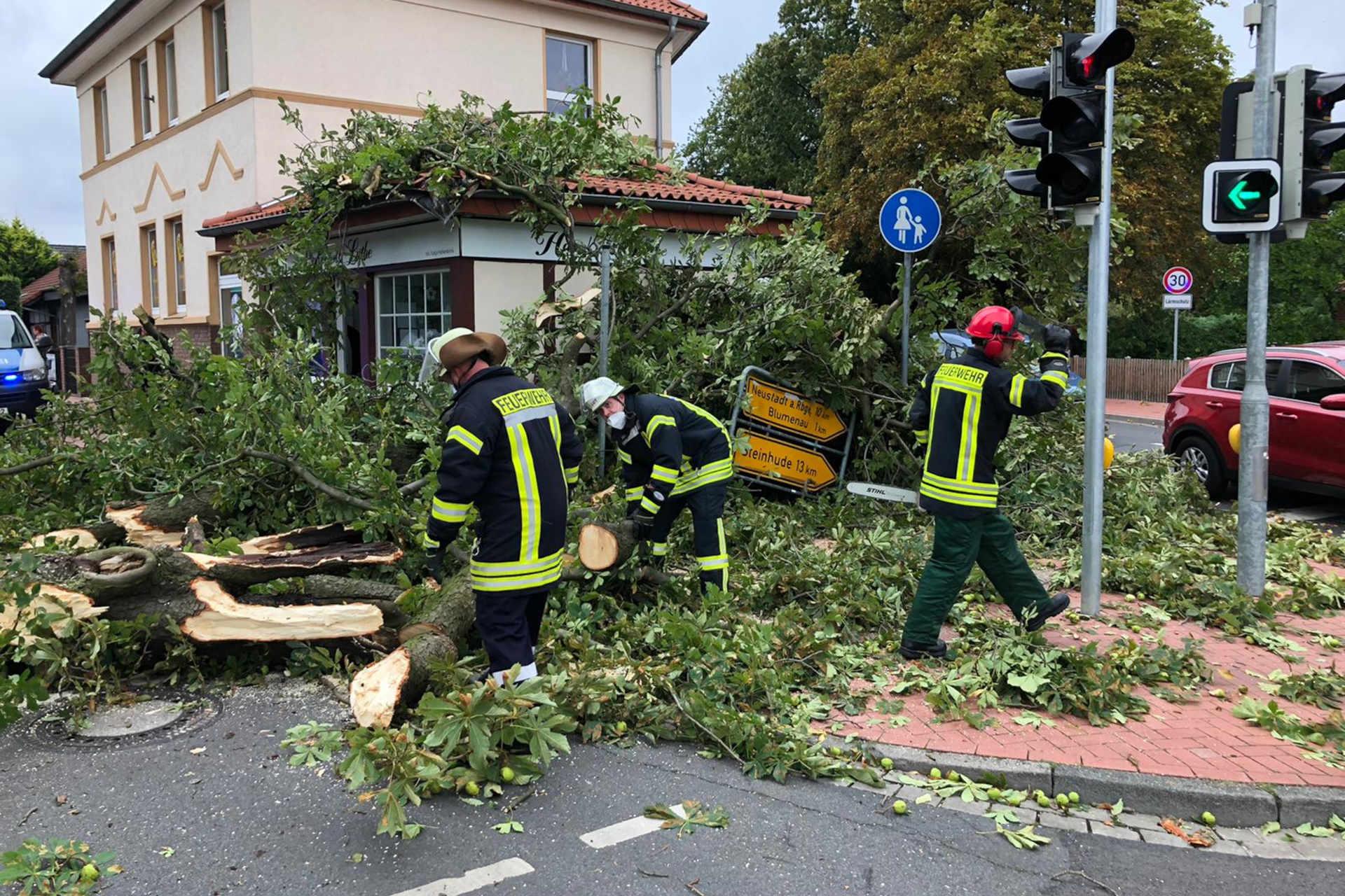 Baum stürzt auf Kreuzung