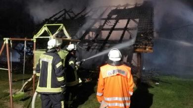 Bild von Holzhaus in Mardorf brennt nieder
