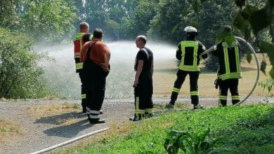 Bild von Flächenbrand am Auedamm