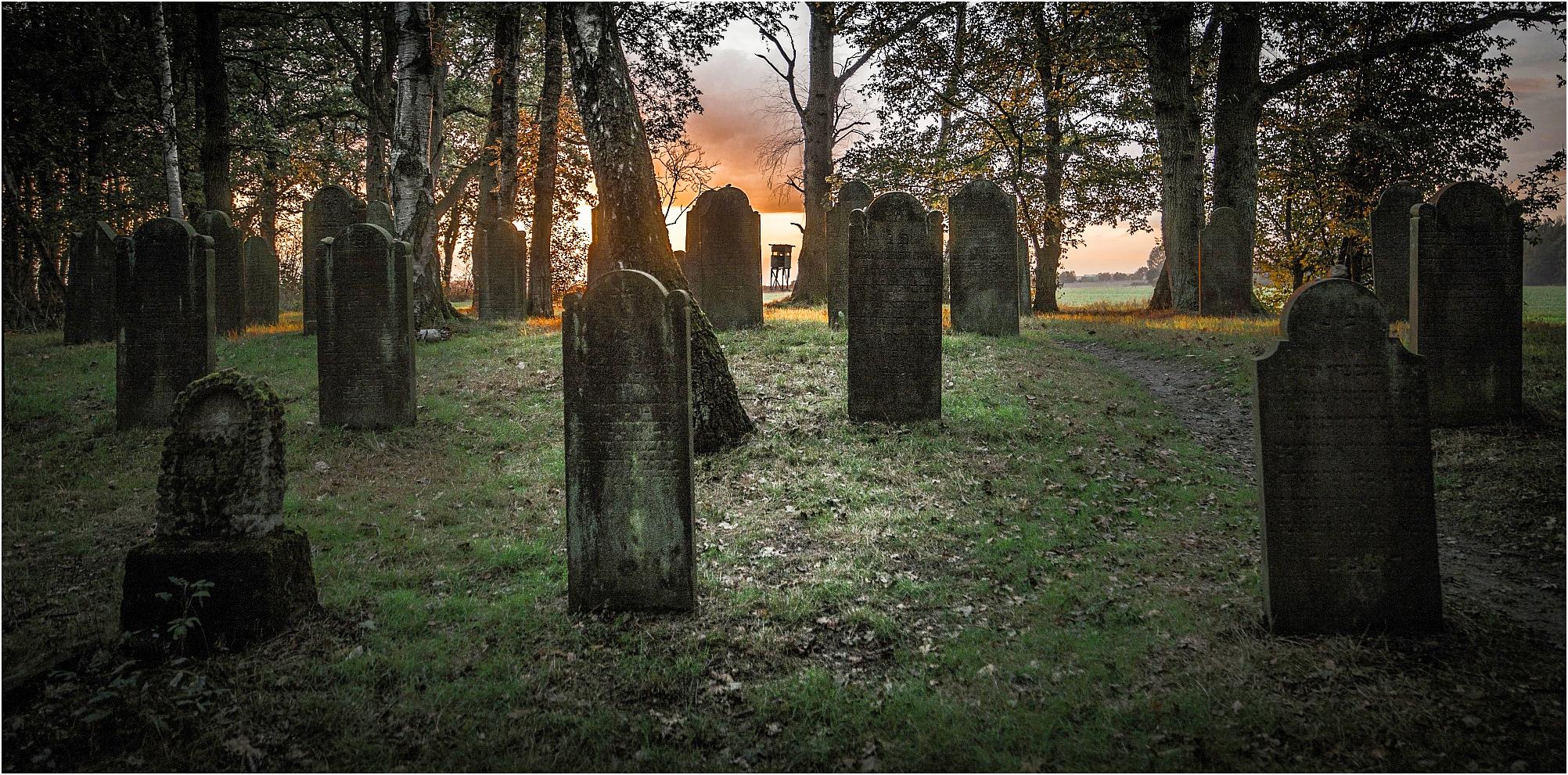 Jüdischer Friedhof in Steinhude